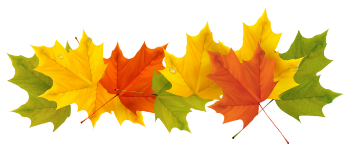 autumn-clipart-transparent-46