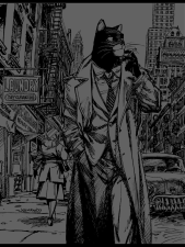 blacksad grey break